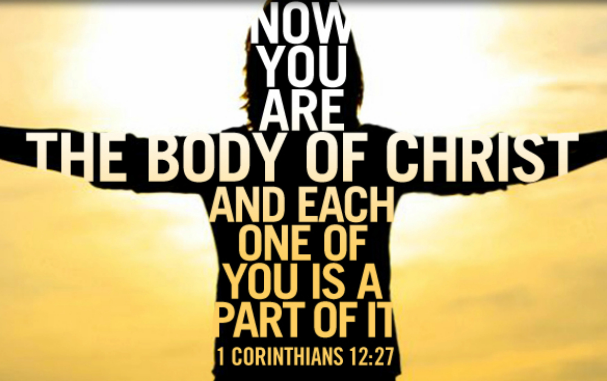 Joy in the Body of Christ | Words, Nevertheless