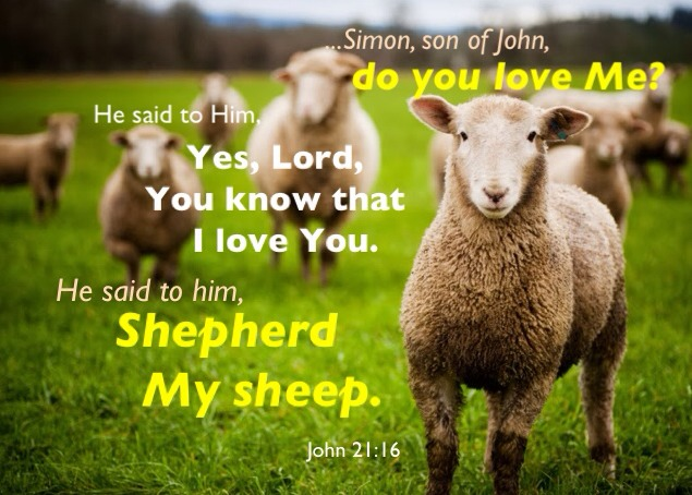 The Lord Flocks us Together, Shepherds us, and Commissions us to Shepherd  Others - A God-man in Christ