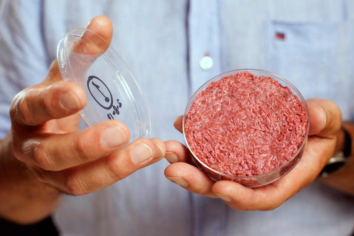 Could you grow meat from stem cells? | HowStuffWorks