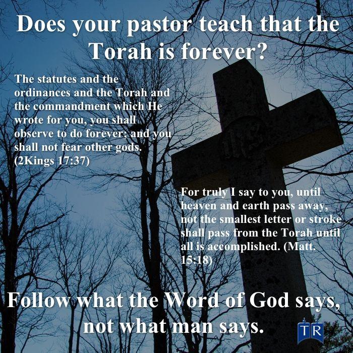 Torah, Jesus, God, Messiah, New Testament | Torah quotes, Torah, Bible facts