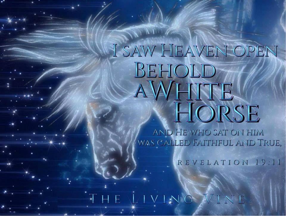 Revelations!!   The revelation of jesus christ, Inspirational horse quotes,  Revelation