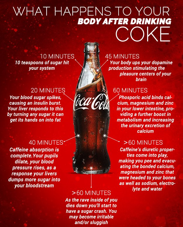 What Happens to Your Body After Drinking COKE – Virtual University of  Pakistan