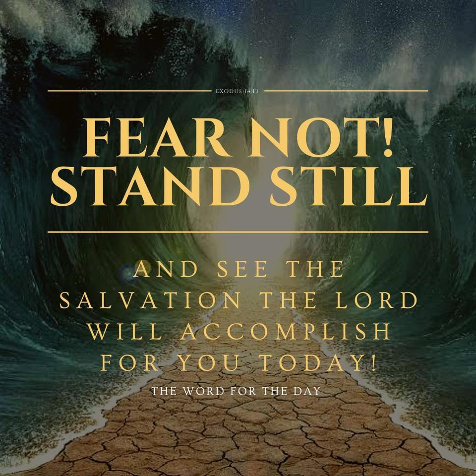 """The Word For The Day — Moses said, """"Do not fear! Stand still and see the..."""