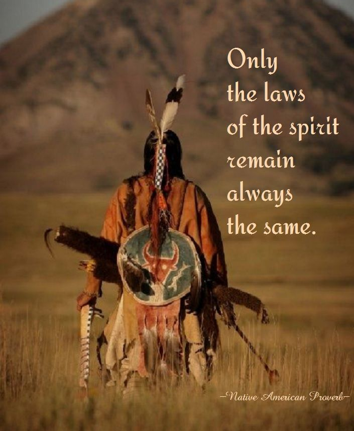 In Native American cultures most tribes believe in Animal totems.  Description from apeerl… | Native american wisdom, Native american quotes,  Native american history