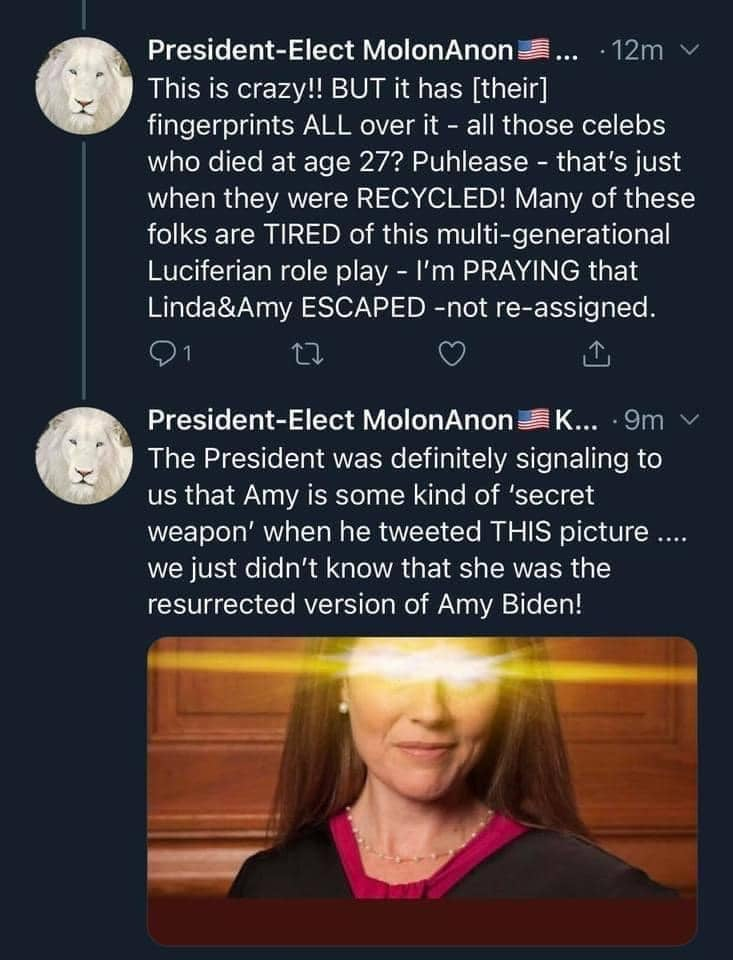 May be a Twitter screenshot of one or more people and text that says '12m President-Elec MolonAnon This is crazy!! BUT it has [their] fingerprints ALL over all those celebs who died at age 27? Puhlease that's just when they were RECYCLED! Many of these folks are TIRED of this multi-generational Luciferian role play -I'm PRAYING that Linda&Amy ESCAPED -not re-assigned. President-El MolonAnon K... 9m The President was definitely signaling to us that Amy is some kind of 'secret weapon' when he tweeted THIS picture.... we just didn't know that she was the resurrected version of Amy Biden!'