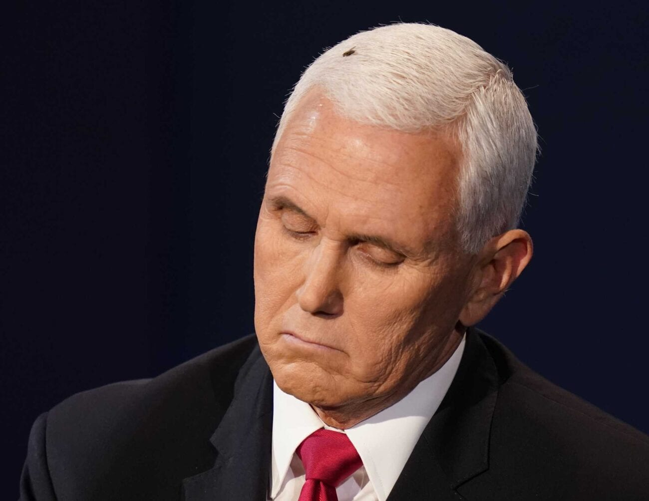 The fly on Mike Pence's head won the VP debate: All the best memes – Film  Daily
