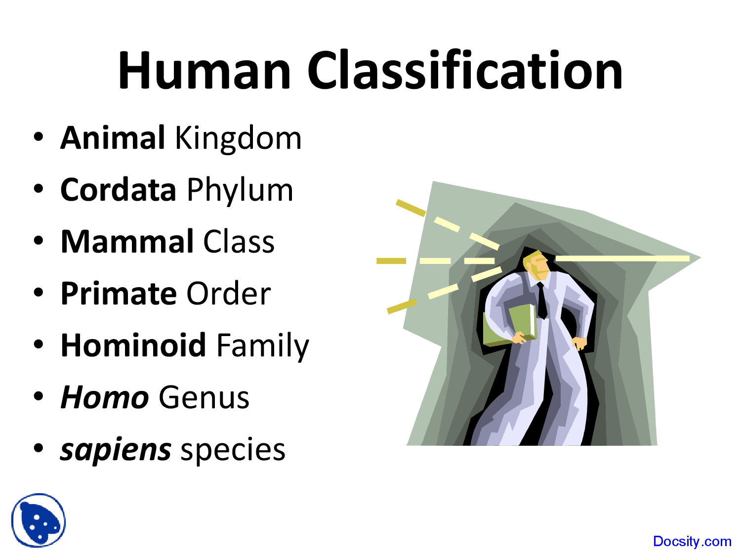 Human Classification - International Baccalaureate Biology - Lecture Slides  - Docsity